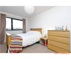 X 2 Fabulous Quality Rooms ! Luxury!! All included