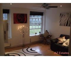 Beautiful room in relaxed Clapham Common