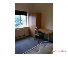 Very Nice and Clean Double Room In A Lovely 3 Bedroom Flat In Acton Area !!!
